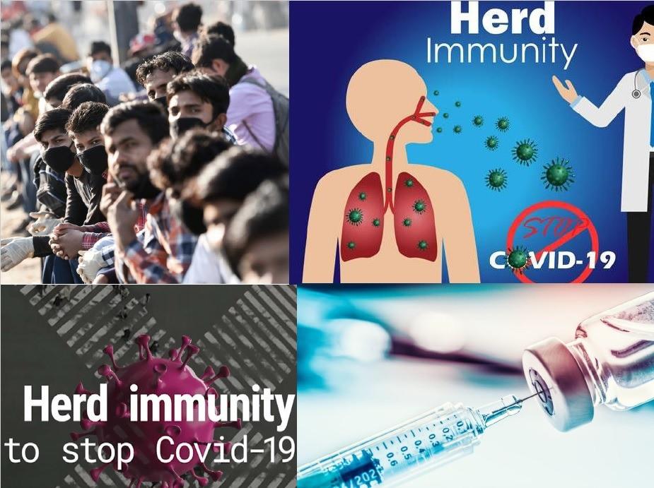 Herd Immunity in Corona Pandemic