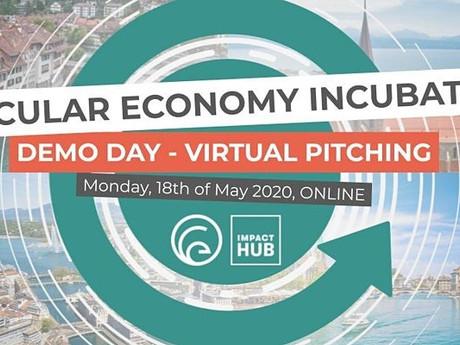 Unsere Erfahrung am Virtual Demo-Day