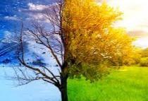 A Spring Haiku: Change Is Coming