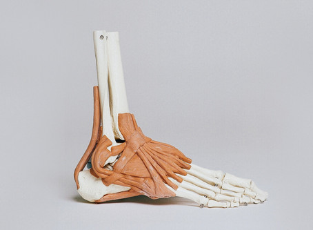 Orthotics, and when we might need them