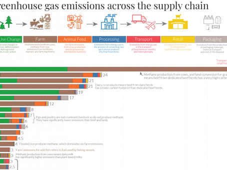 [EN] Our World in Data: You want to reduce the carbon footprint of your food?