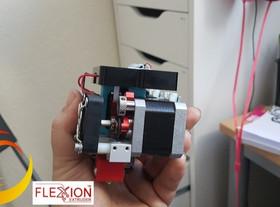 Flexion Extruder on the Flashforge Dreamer