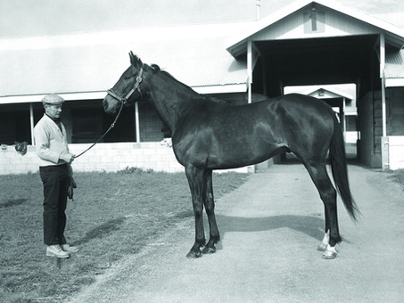 Kelso: Five Time Horse of the Year