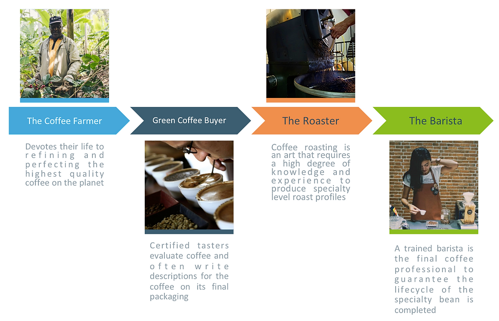 The specialty coffee lifecycle