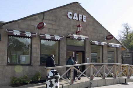 Muddy Duck Café