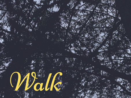 Walk: Introduction