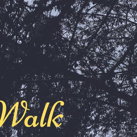 Walk: Introduction