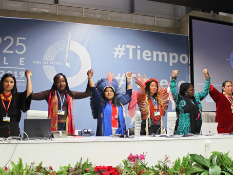 People Power Rises for Climate Justice at COP25: WECAN International Analysis & Reflection