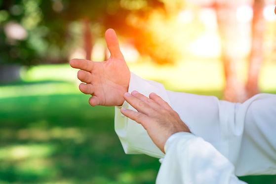 Qigong Hands.jpg