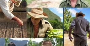De l'histoire de Cuba - Par René Lopez Zayas - La fête du paysan cubain