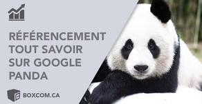 Indexation site Web | Google Panda, Tous savoir sur les mises à jour de l'algorithme Google.