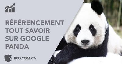 Indexation site Web   Google Panda, Tous savoir sur les mises à jour de l'algorithme Google.