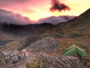 Wild Camping with a Dog