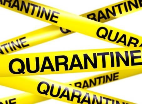 Quarantine Pack 4