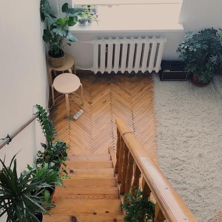 Tipos de pisos de madeira: assoalhos, tacos e parquets