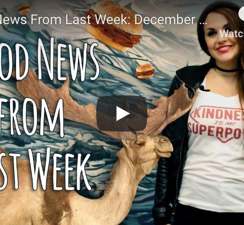 Good News from Last Week: December 4 - December 11, 2016