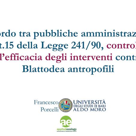 Blattodea antropofili, Comune Bari