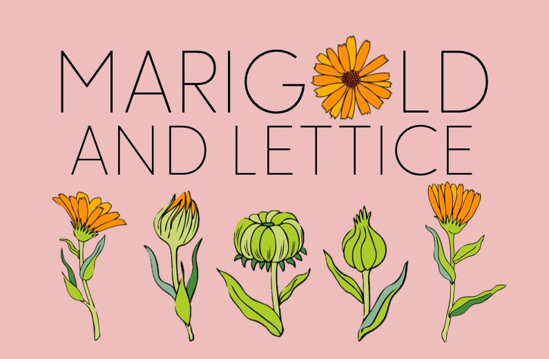 marigold and lettice logo