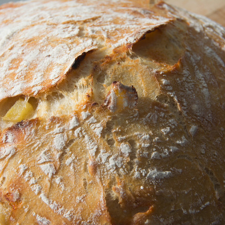 No Knead Apple Cheddar Bread