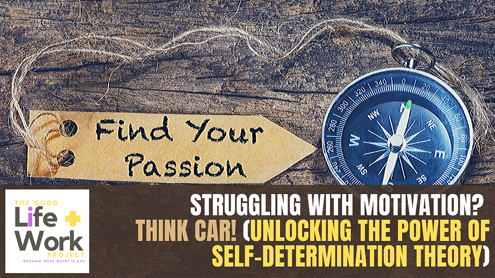 motivation and self determination theory