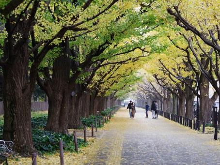 Jingugaien Tokyo