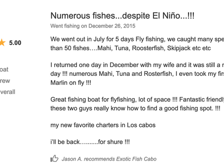 2015 December 26th. Customer's review...