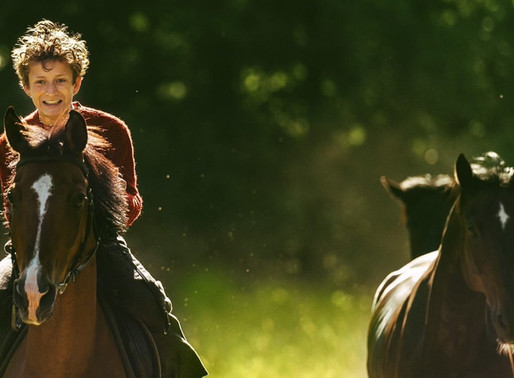 Out Stealing Horses film review