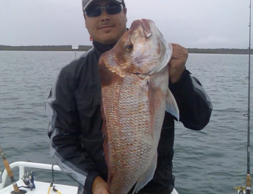 How to Catch Moreton Bay Snapper on Soft Plastics - Gobblers Lures Blog