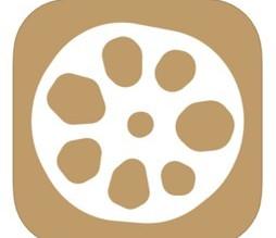 直売所検索アプリ|Veggieベジーをリリース