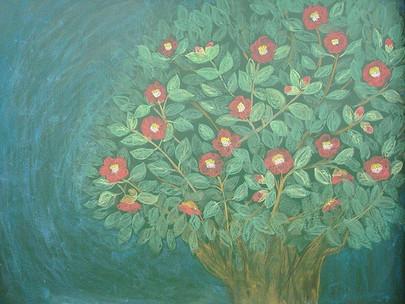 [TOB in 인지학]2020년 인지학 여행-열한번재 시간 : 씨앗과 교육 , 어떤 언어로 교육을 말해야만 하는 걸까와 어떻게 씨앗을 잘 자라나게 할 것인가에 대하여