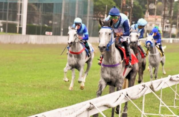 Arabians Returns garante o recomeço das corridas do Cavalo Árabe