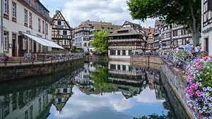 Spring flowers on the Rhine river in Strasbourg, France