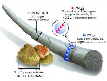 Particulate Matter 2.5 (PM 2.5)