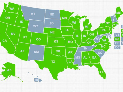 What state does your DMDDer live in?