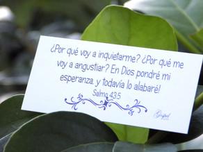 Día 51:Por qué voy a inquietarme? por qué voy a angustiarme? En Dios pondré mi esperanza Salmo 43:5