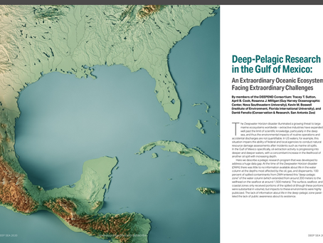Our Research in ECO's Deep-Sea Issue!
