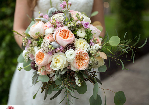 Love Garden Roses? This Contest Is for You! Second Annual Garden Rose Design Contest Now Open