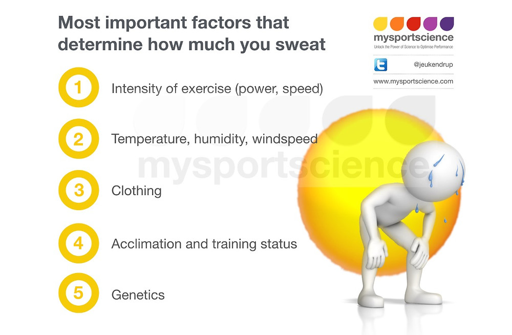 Determinants of sweat rate