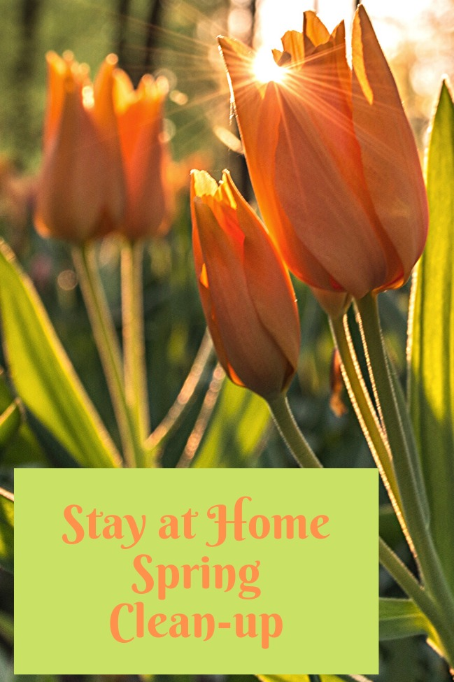 Stay at Home Spring Cleaning Tips BLOG: Mern Interior Design