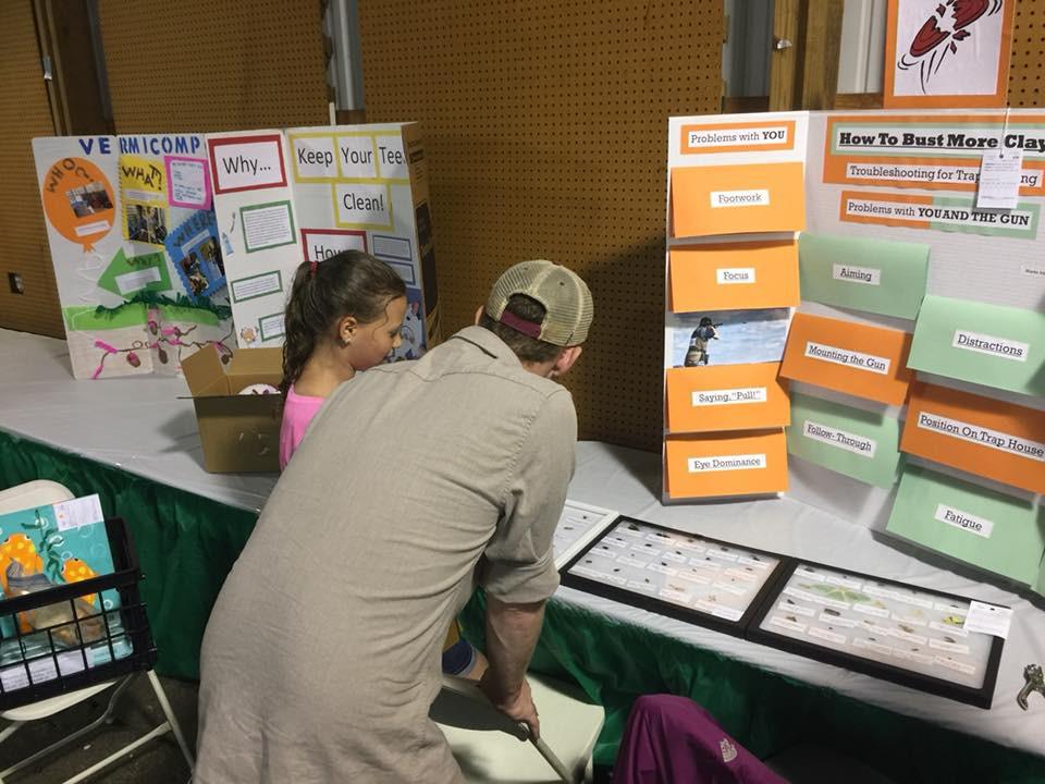 Harford County 4-h farm fair bug collection
