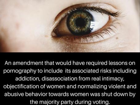 Pornography Risks Amendment Not Adopted