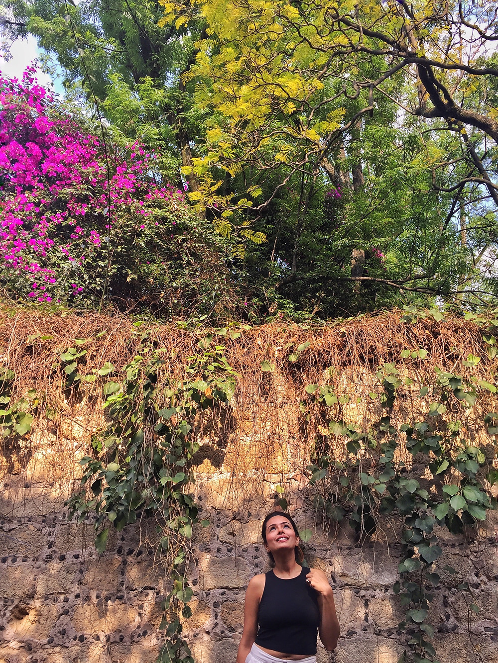 San Angel Nature
