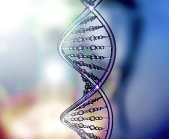 Organisational Culture and its effect on employees' DNA