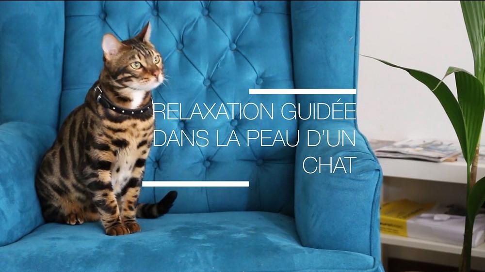 relaxation pour se détendre