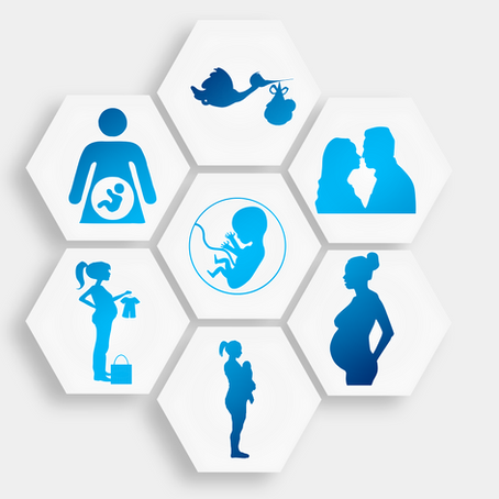 Соответствия месяцев беременности планетам, градусы асцендента рождения