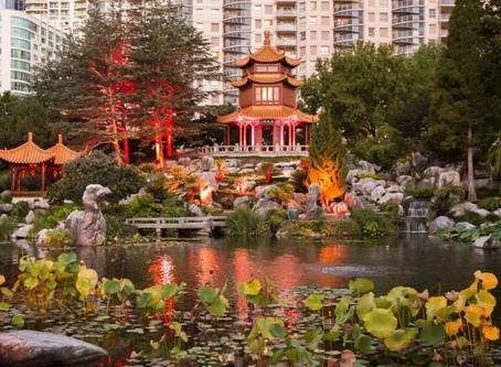 Sydney: Chinese Garden of Friendship