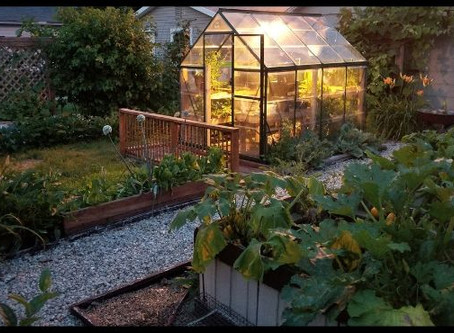 Using A Small Greenhouse All Year Long