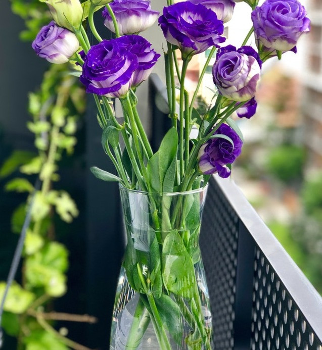 Keep an eye on the water level in your vase and add water as needed