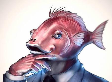 Jak najmout manažera a nespálit se? Aneb ryba smrdí od hlavy (1/3)