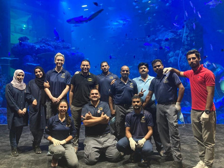 An Interview With An Aquarist
